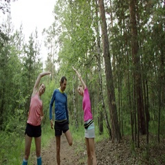 Warm-up exercises in the forest Stock Footage