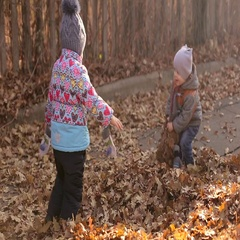 Two happy kids throwing autumn leaves in the forest. Happy childhood. Stock Footage