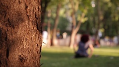 Young Adult Woman Settling Down Relaxing on Grass Stock Footage