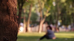 Meditating Woman Side Pan to Free Park Space Stock Footage