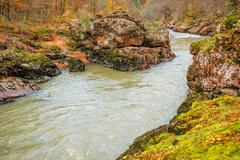 Landscape with mountain river and forest Stock Photos