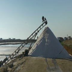 Trapani Saltpans Salt Harvest Pan Stock Footage