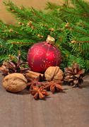 Different kinds of spices, nuts and cones, Christmas decorations and s Stock Photos