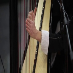 Playing harp musical instrument Stock Footage