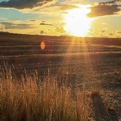 Sunset on the lake Khar-Us Nuur, Mongolia. Full HD. Stock Footage