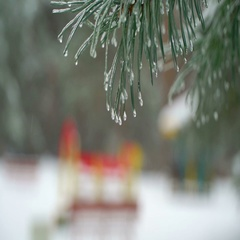Christmas Tree Against Background Natural Snow Falling With Light Wind in Icicle Stock Footage