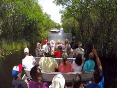 Tourists on an air boat in the Everglades swamp in Florida Stock Footage