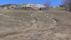 Two mountain creek alpine zone Stock Footage