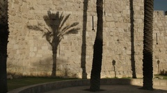 Palm shadow on the wall of the old city in jerusalem Stock Footage