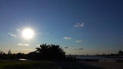 St Kilda Beach, Dolly Shot . Sun, Palm Tree Stock Footage