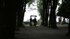 In love couple riding in the park on a double bike Stock Footage