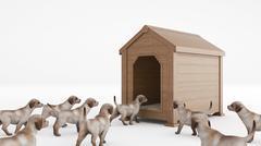 Wooden dog's house. concept size dog's house Stock Illustration