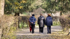 Group of senior people walking in park on a sunny autumn day, retirement Stock Footage