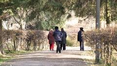 Group of elderly friends strolling in autumn park, senior people enjoying walk Stock Footage
