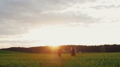 Beautiful back view of young couple walking in field at sunset. They move away Stock Footage