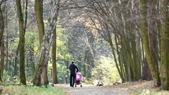Father walking with baby stroller in park, sunny autumn weather, parenting Stock Footage