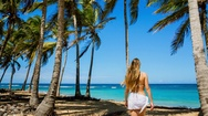Woman under palm trees Stock Footage