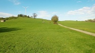 Rural landscape with wind turbine and cows Stock Footage