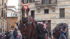 Piazza Di Spagna Square View with Horse Wearing Red Harness Waiting Tourists. Stock Footage