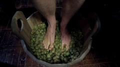 Wine Processing with Legs in Wooden Barrel Stock Footage