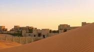 Oasis in desert Stock Footage