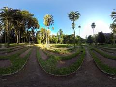 Botanical Garden or Jardim Botanico, Rio de Janeiro, Brazil. 360 video vr Stock Footage