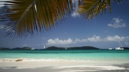 Palm fronds and beach at Salomon Bay, St John Stock Footage