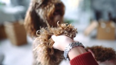 Girl plays with curly dog, smiling cur, dog stand on its hind legs, labradoodle Stock Footage