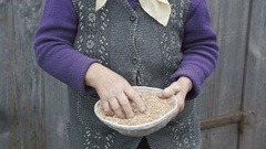 Portrait of very old smiling woman looking through the bowl of wheats' grains 4K Stock Footage