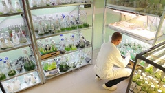 Man scientific research storage, oxygenation, laboratory algae, bubbles, science Stock Footage
