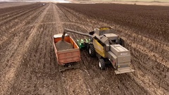Combine harvester unloading sunflower seeds in truck. 4K Russia. September 2016 Stock Footage