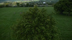 Glastonbury festival site stone circle drone aerial tress Stock Footage