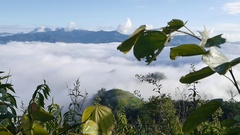 Landscape of moving mist in the mountain at Doi-Montngo, Chiang Mai –Thailand Stock Footage