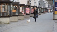Woman walks dog on expensive shopping street, Kudamm, Berlin, Germany Stock Footage