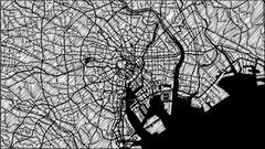 Tokio City Map Animation Footage 4K Stock Footage