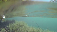 Immersion in the lake Stock Footage