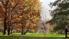 Jogging on a path  an park Stock Footage