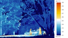 Infra-red thermal image heat vision, familes, birds walk in park Stock Footage
