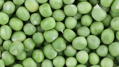 Fresh green pea rotate. Green pea clockwise rotation Stock Footage