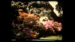 Vie garden flowers green Stock Footage