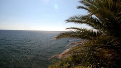 Overlooking the Adriatic Sea and palm trees in Montenegro Stock Footage