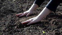 Female hands working the land Stock Footage