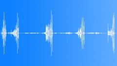 Black redstart Sound Effect