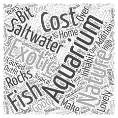 Good Deals On a Saltwater Aquarium word cloud concept Stock Illustration