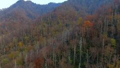 Aerial video Tennessee Smokey Mountains 4k Stock Footage