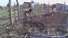 Rural woman working on her small vegetable garden farm Stock Footage