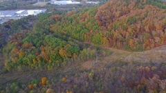 Electric lines through the woods Stock Footage