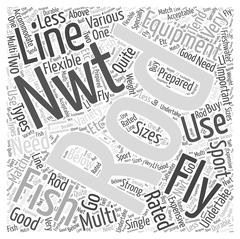 Fly Fishing Equipment word cloud concept Stock Illustration