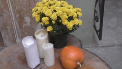 Beautiful vintage autumn still life with pumpkin and flowers Stock Footage