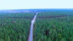 Dense forest with swamp and high voltage power lines. Aerial top view Stock Footage